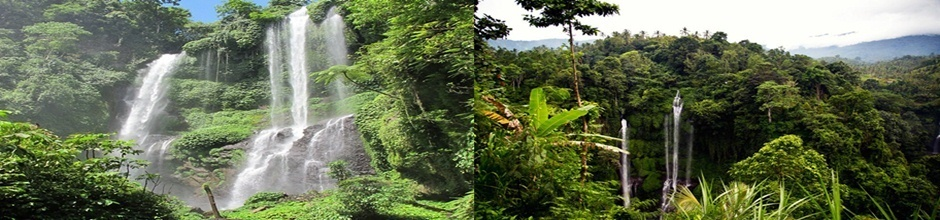 Bali Hidden Waterfall