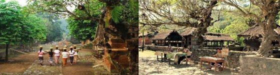 Tenganan Village Tour