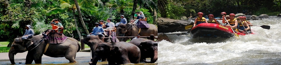BALI WATER RAFTING AND ELEPHANT RIDE TOUR