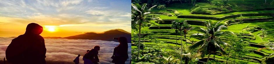 Batur Trekking and Ubud Tour