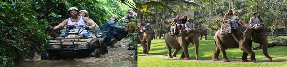 Taro Elephant Ride and ATV Ride Adventure Tour