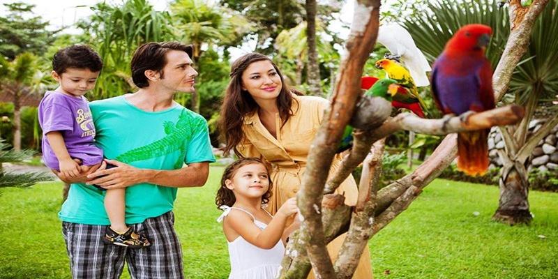 Bali Zoo and Uluwatu Tours